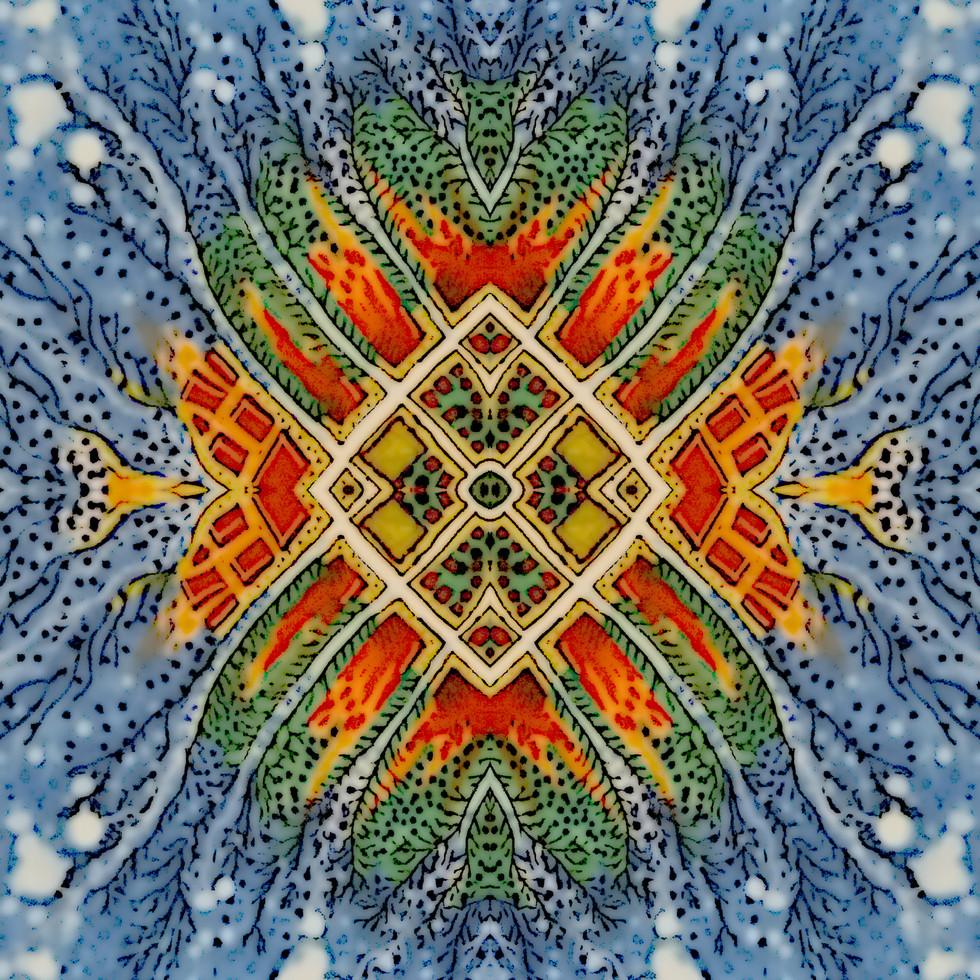 amoebas2.jpg