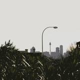 skyline2a.jpg