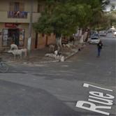 Rue 7 Dakar7.jpg