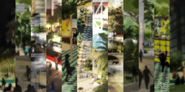 sonho tropical3.jpg