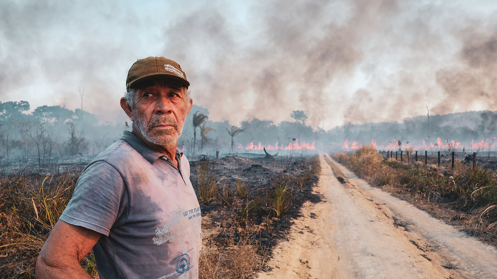 Forest fires in the Amazon rainforest