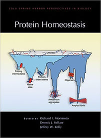 RicksBookProtein Homeostasis.jpg