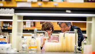 molecular-biosciences-544x310.jpg