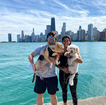 Pups got to checkout Chicago