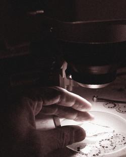 microdot camera microscope
