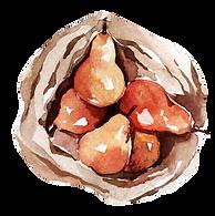 Eco-Food-14.png