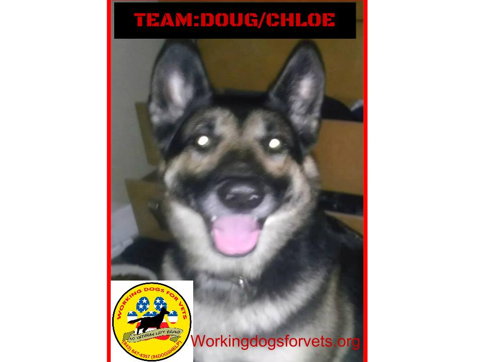 TEAM: DOUG/CHLOE