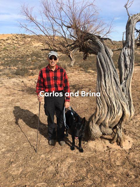 Carlos/Brina