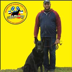 TeamService dog in training