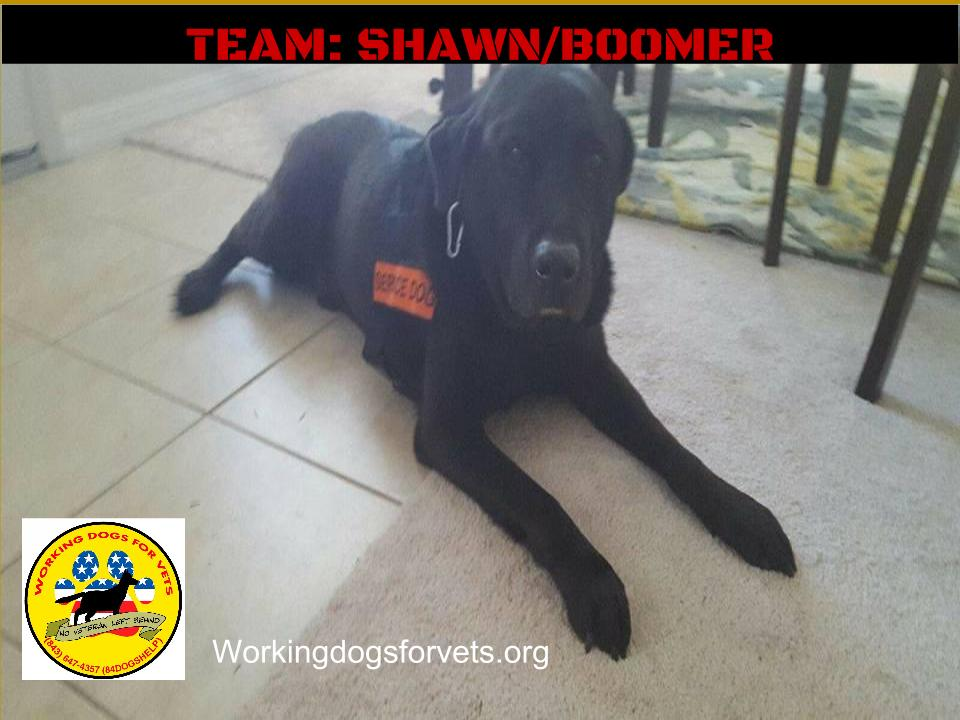 TEAM: SHAWN/BOOMER
