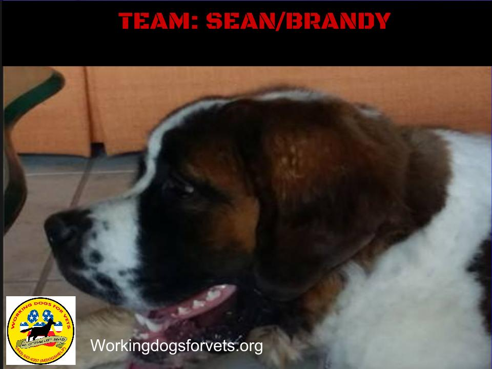 TEAM: SEAN/BRANDY