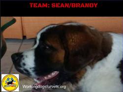 TEAM: SEAN/BRANDY