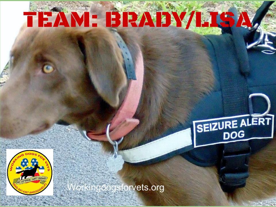 Brady/Lisa