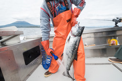 Sitka Alaska Fishing Trips