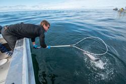 Sitka Alaska Fishing