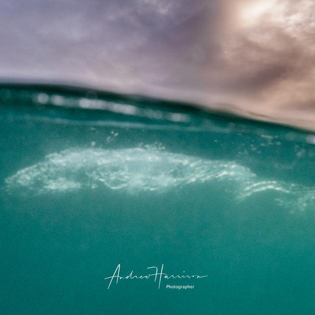 20210105_Inverloch Surf Beach_0032.jpg