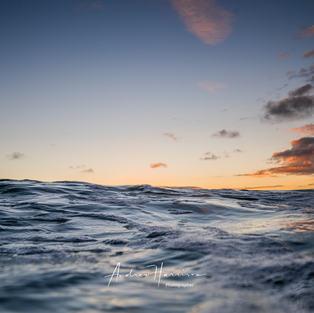 20201223_Invy Surf Beach_0018.jpg