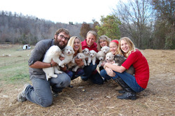 Family with Puppies