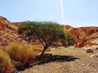 Desert Tour (7).jpg