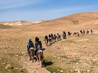 Desert Tour (2).jpg
