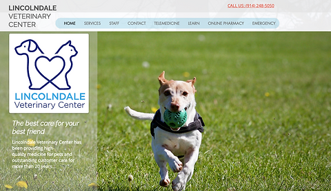 Lincolndale Veterinay Center landing page - photo of a dog playing fetch