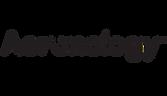 Aeronology Branding Logo Design.png