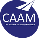 CAAM Vector.png