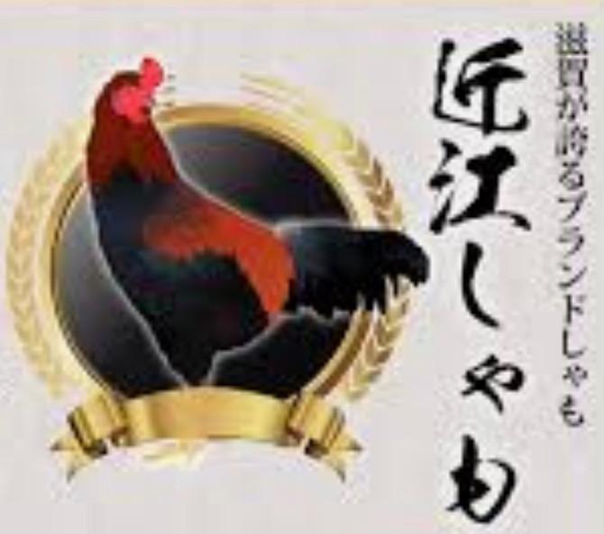 地鶏の近江軍鶏🐔