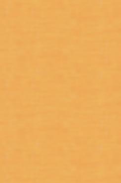 kraft-980,1477px-24clr-501ko.png