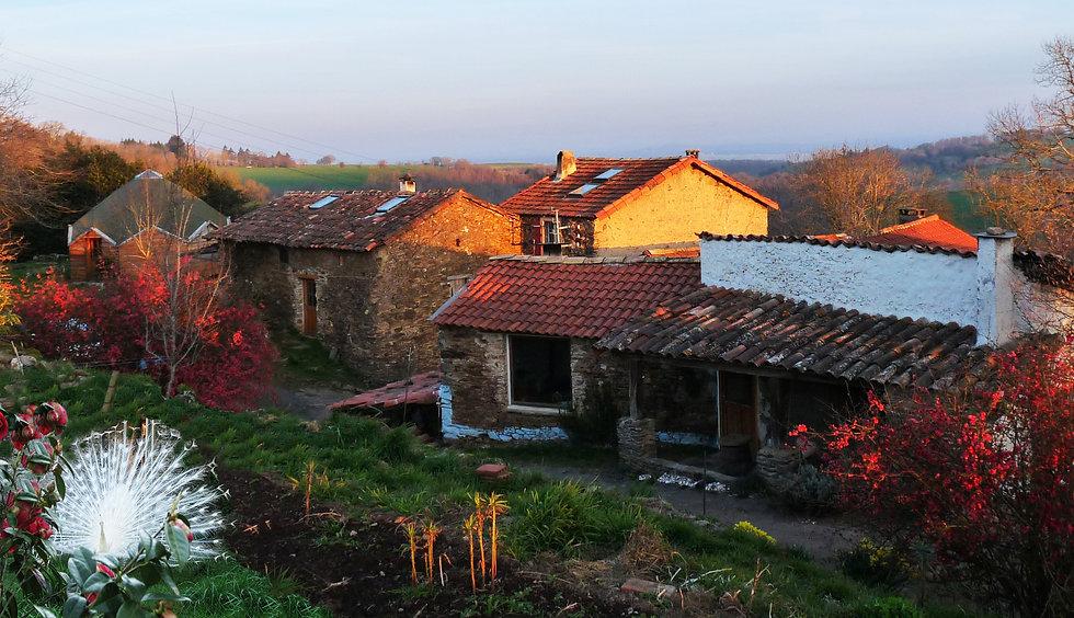 hameau matin d'avril paon blanc