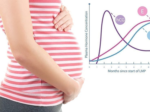 What causes low Progesterone levels? Part 1