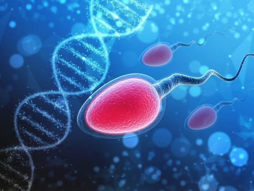 Is  a Sperm analysis helpful?
