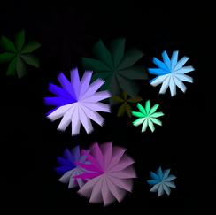 week5 popped flower function
