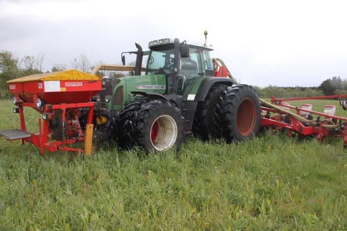 Direkte såning af majs i en grøn efterafgrøde giver besparelser