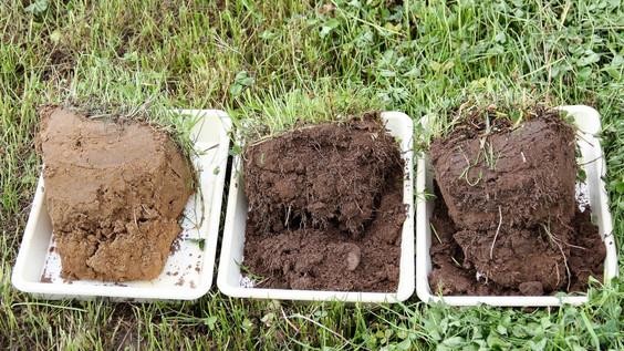 Der findes enkle metoder til at diagnosticere din jord