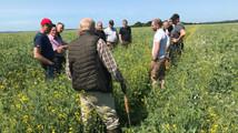 Bliv klogere på Conservation Agriculture med en erfa gruppe