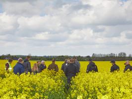 Stor interesse for Conservation Agriculture