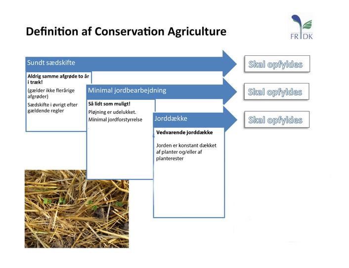 Debat: Hvis vi landmænd stopper med at pløje jorden, kan vi lagre CO2 i markerne