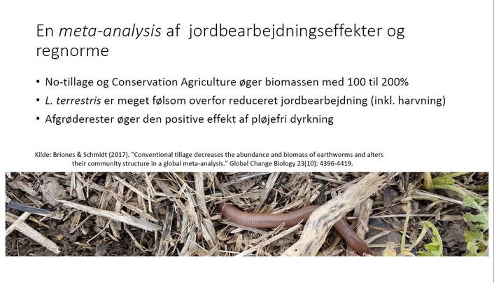FRDK foreslår fornuftig brug af glyphosat
