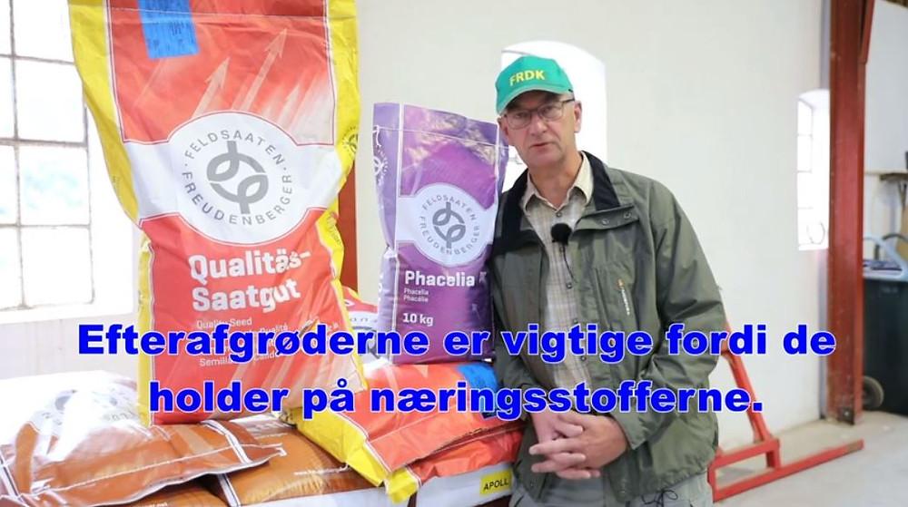 Søren Ilsøe fortæller om efterafgrøder