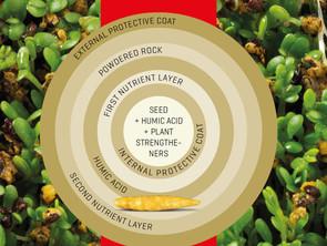 Optimering af frø til efterafgrøder