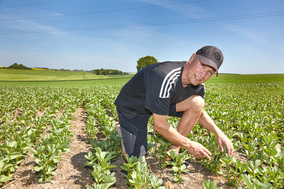 """Skeptiker dag """"Klima og biodiversitet uden plov"""" gentages i Jylland den 22. juni 2021"""