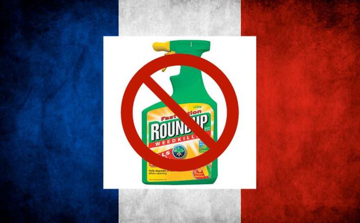 Frankrig åbner for glyfosat til Conservation Agriculture