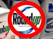 EU blokerer Østrigs planlagte glyfosatforbud