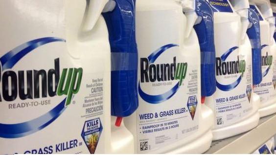 Kemiker: Roundup debatten er bizar