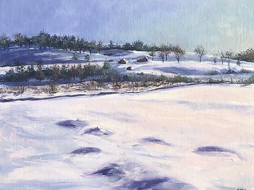 Winter Morning, Groton, MA