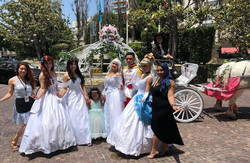 Princess themed birthday rides