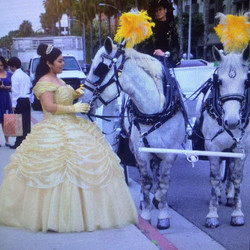 Quinceanera Horse - Drawn Carriages
