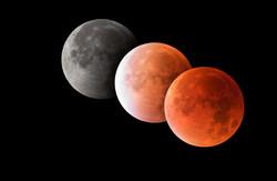 Astro Moon Sun Planets