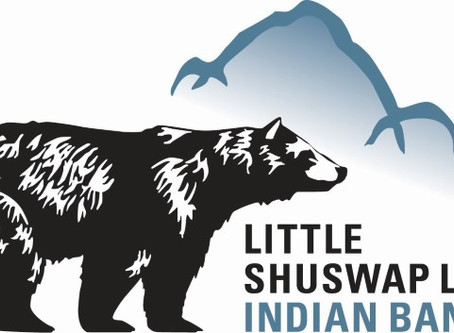 Preliminary Report -  Little Shuswap Lake Indian Band, SLMA Project